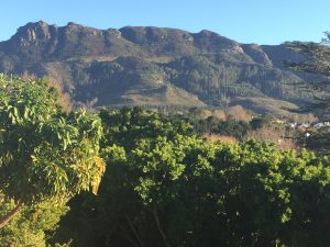 Constantia Nek Jeep Trail